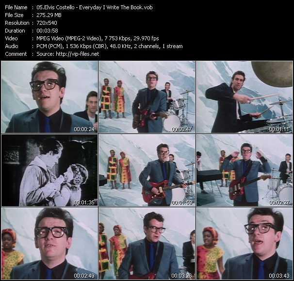 Elvis Costello - Everyday I Write The Book