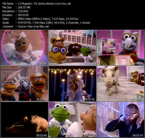 Muppets - I'm Gonna Always Love You
