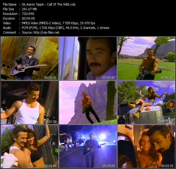 Aaron Tippin - Call Of The Wild