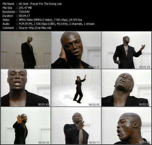 Seal - Prayer For The Dying