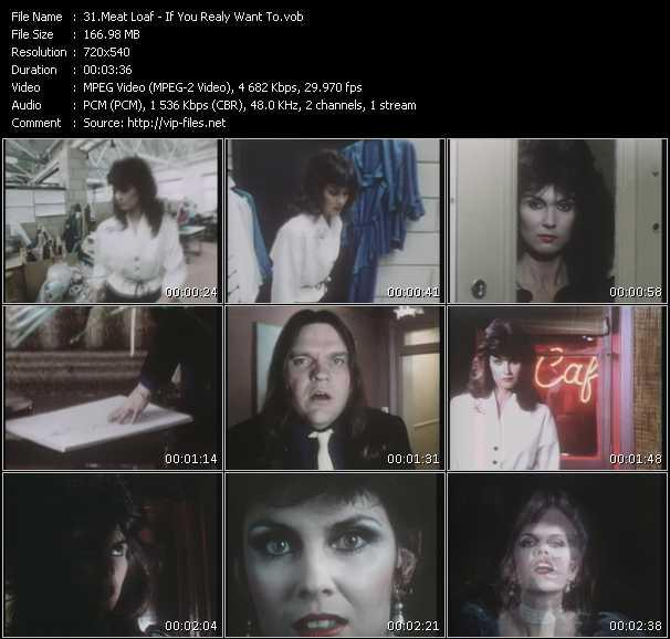 Meat Loaf - If You Realy Want To