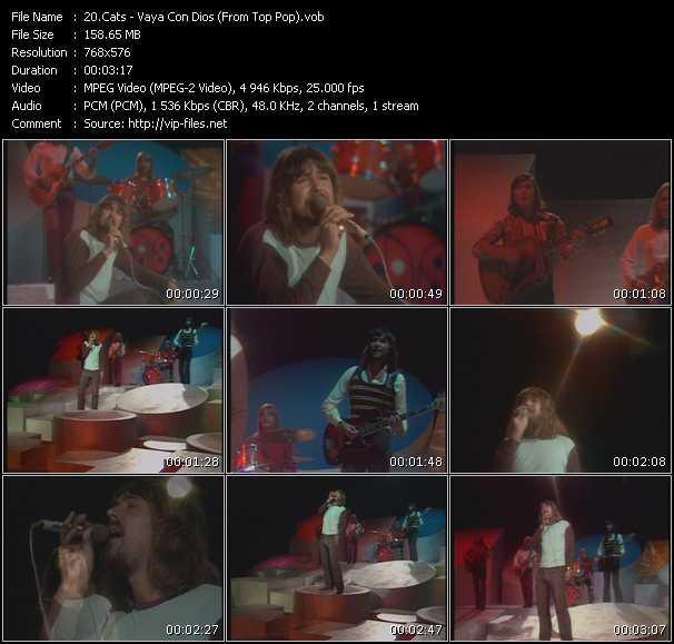 Cats - Vaya Con Dios (From Top Pop)