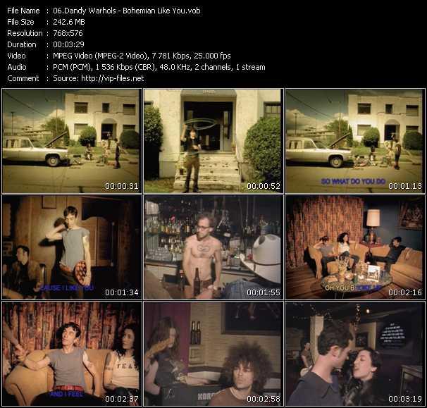 screenschot of Dandy Warhols video