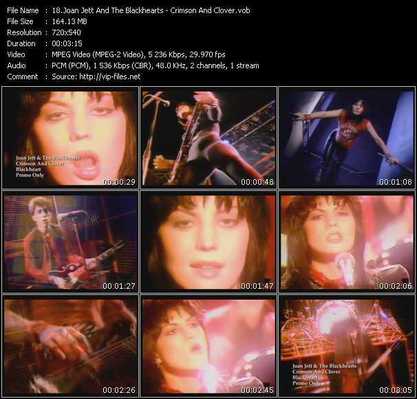 Joan Jett And The Blackhearts - Crimson And Clover