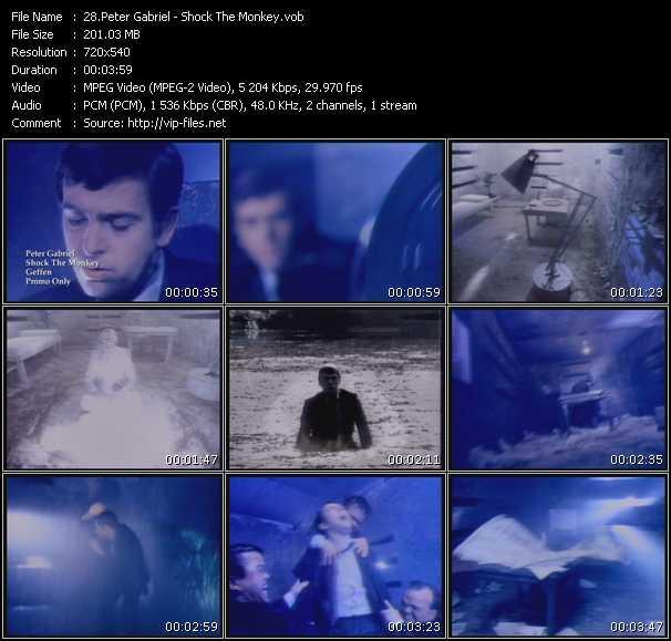 Peter Gabriel - Shock The Monkey