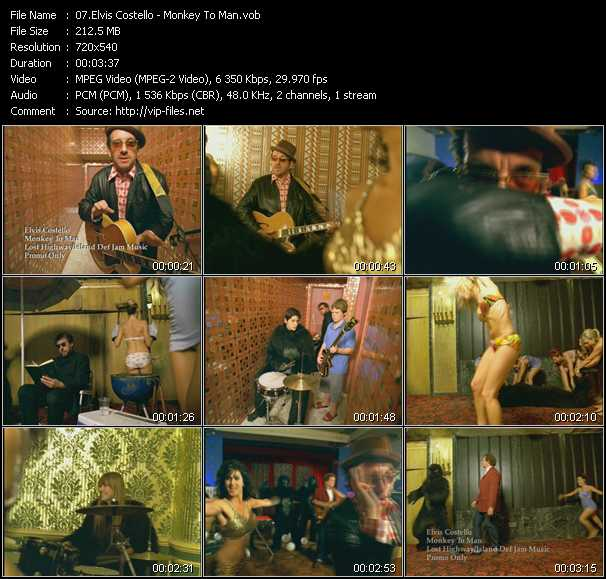 Elvis Costello - Monkey To Man